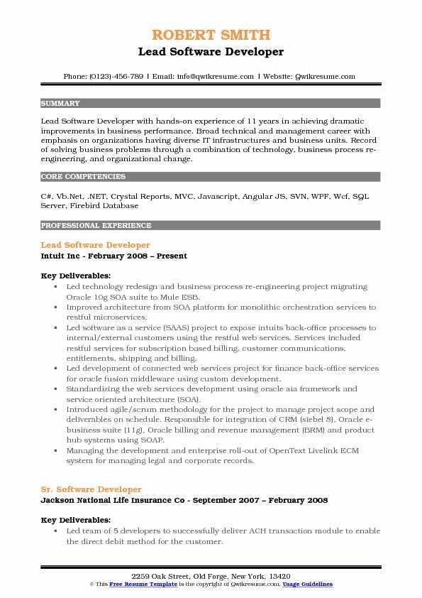 Lead Software Developer Resume Example