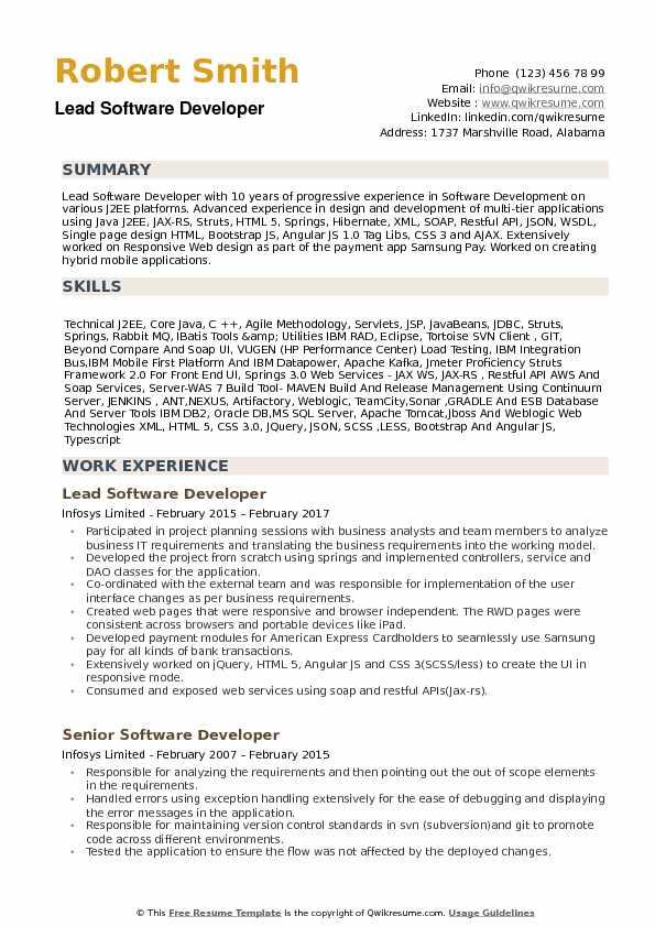 Lead Software Developer Resume Samples | QwikResume