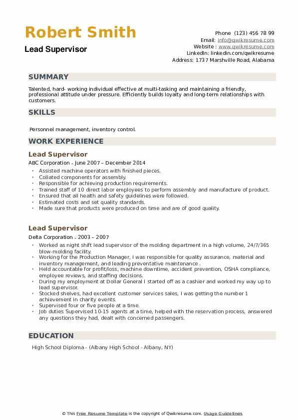 Lead Supervisor Resume example