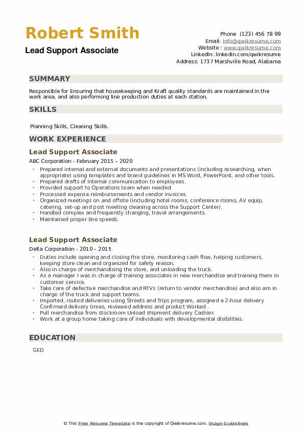 Lead Support Associate Resume example