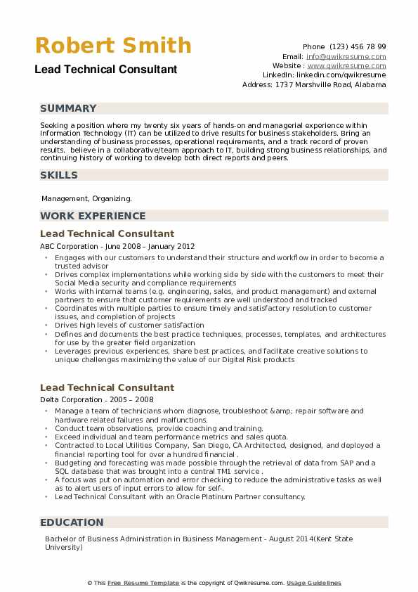 Lead Technical Consultant Resume example