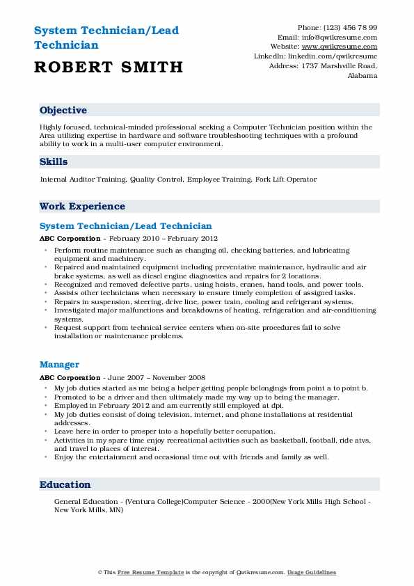 System Technician/Lead Technician Resume Template