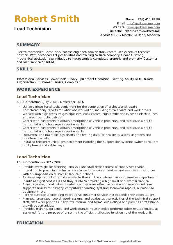Lead Technician Resume example