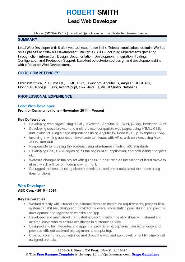 Lead Web Developer Resume Format