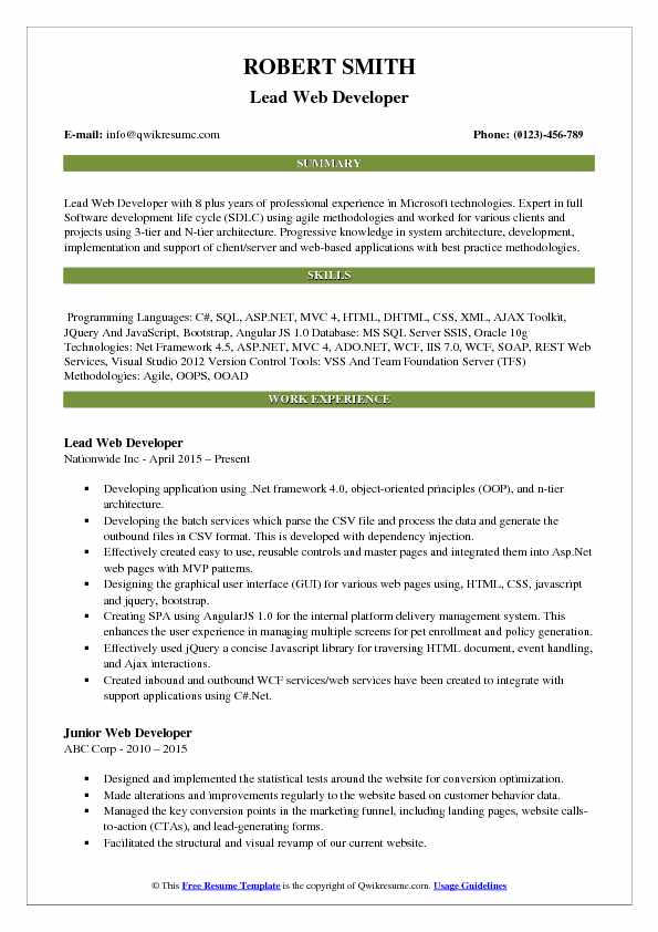 Lead Web Developer Resume Template