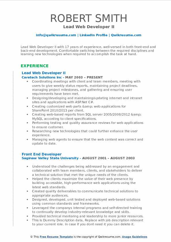 Lead Web Developer II Resume Model