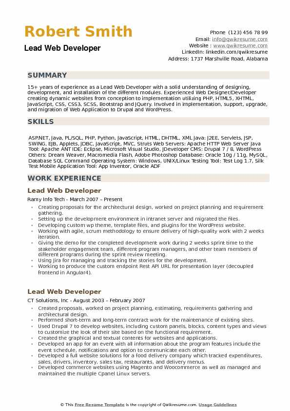 lead web developer resume samples
