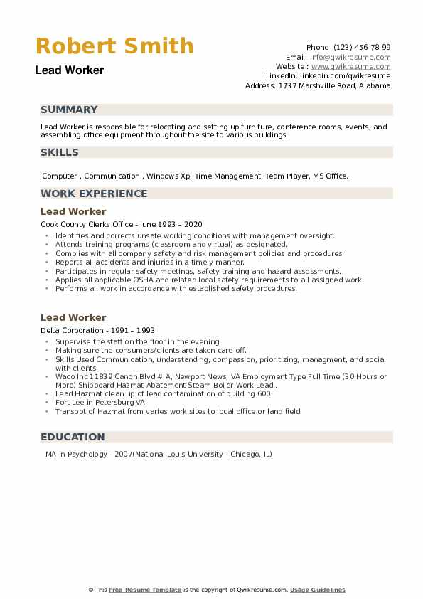 Lead Worker Resume example