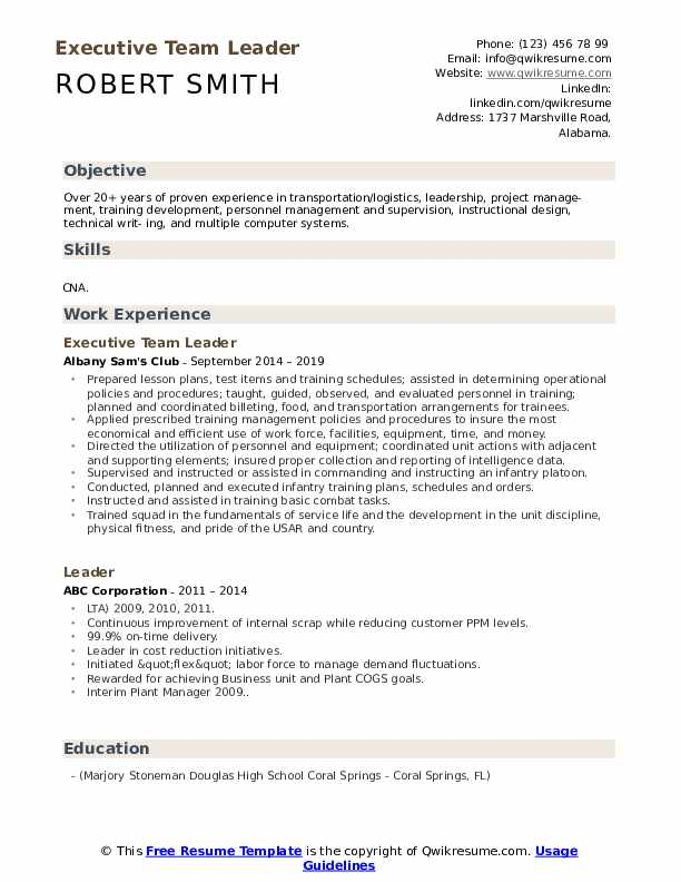 Executive Team Leader Resume Format
