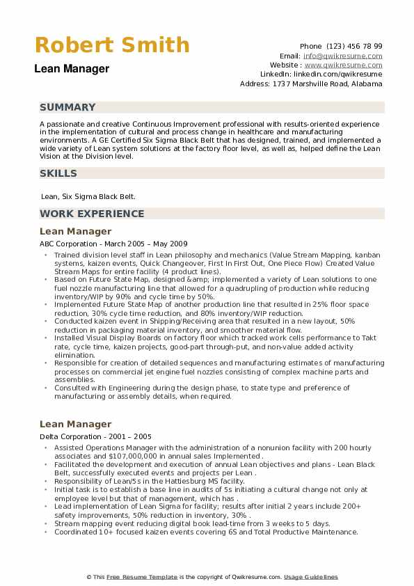 Lean Manager Resume example
