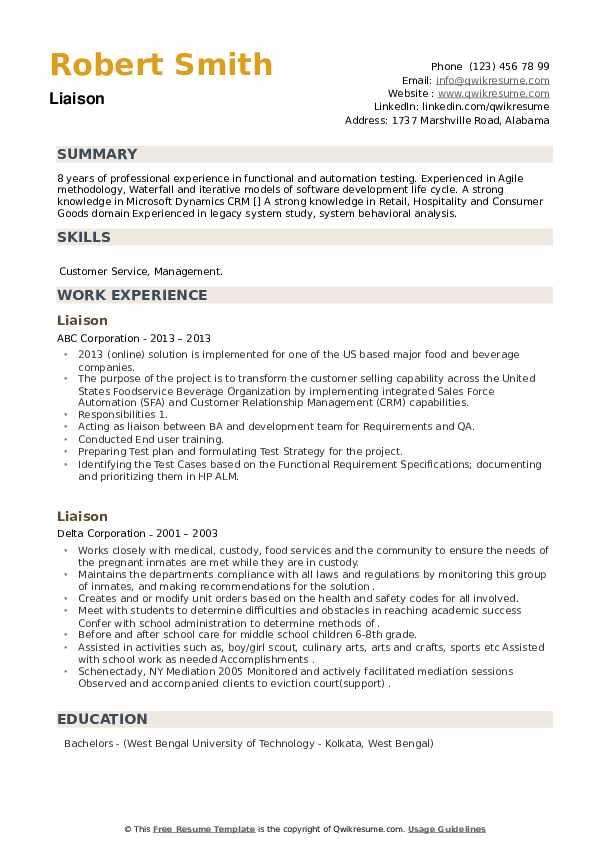 Liaison Resume example
