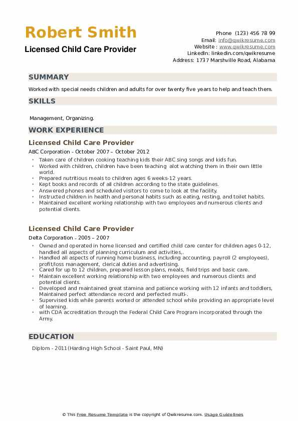 Licensed Child Care Provider Resume example