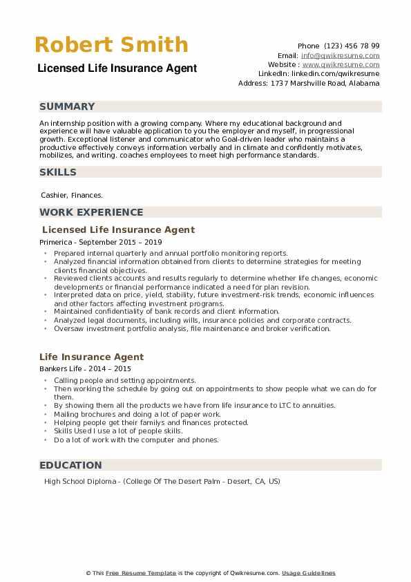 Licensed Life Insurance Agent Resume Model