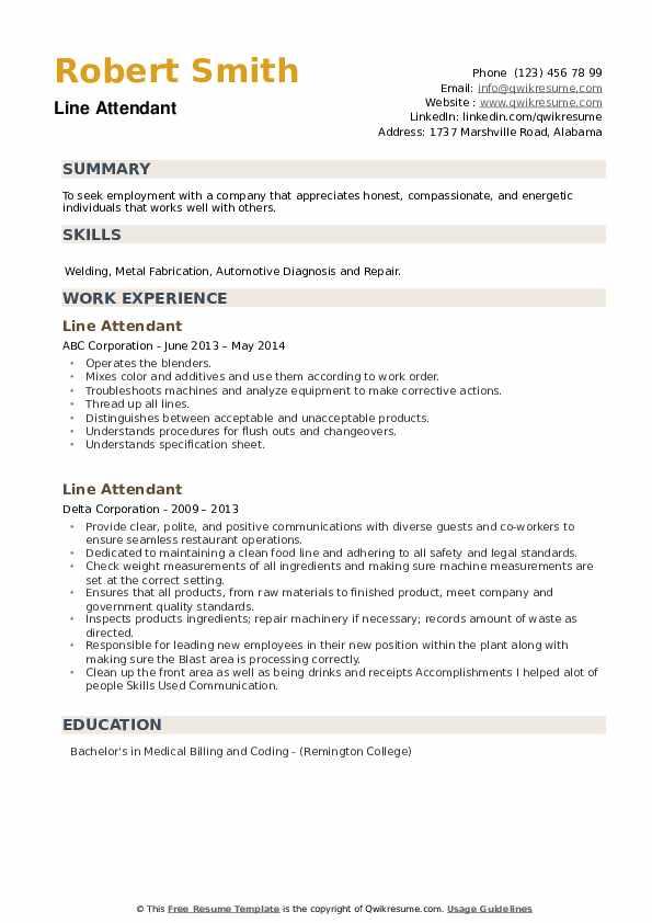 Line Attendant Resume example