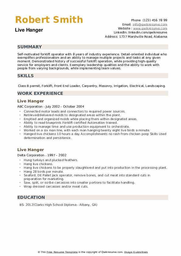 Live Hanger Resume example