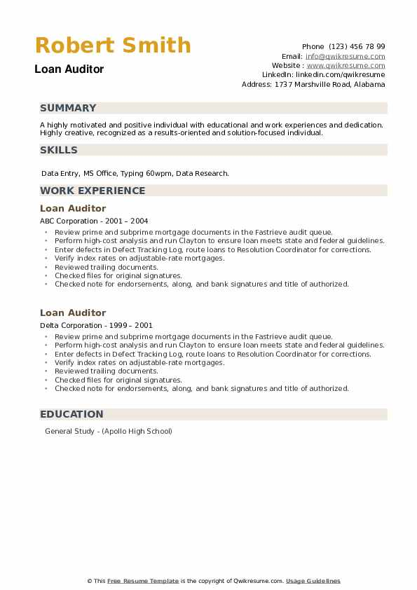 Loan Auditor Resume example