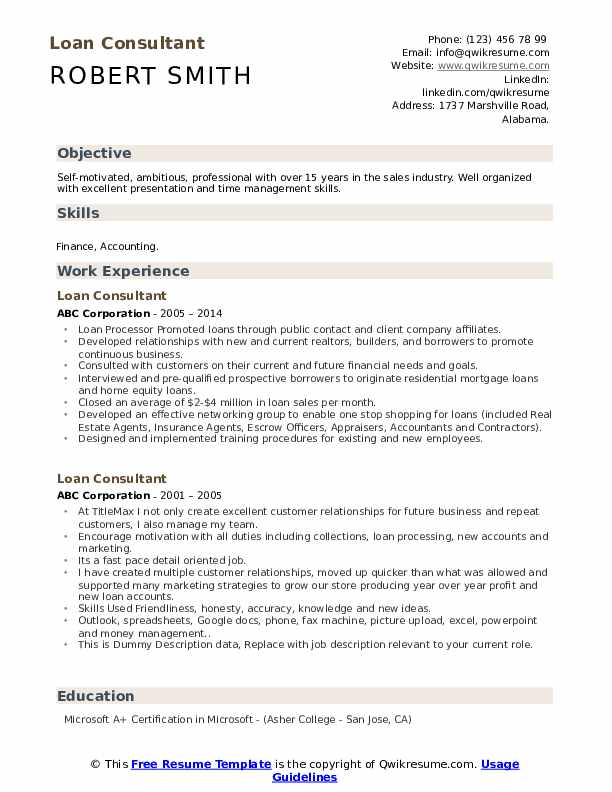 Loan Consultant Resume example