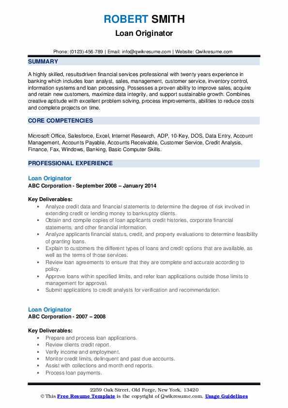Loan Originator Resume example