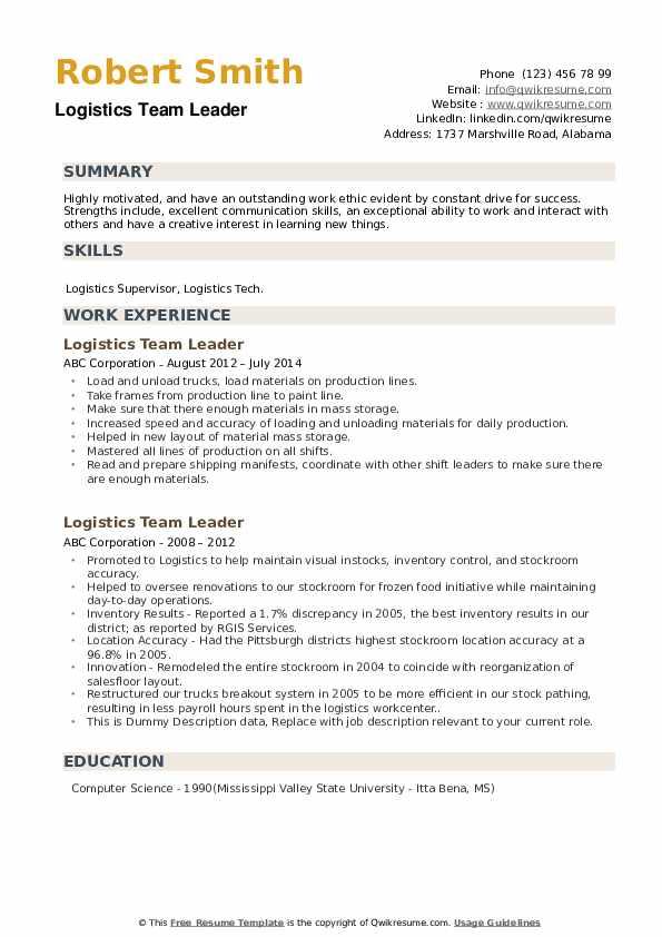 Logistics Team Leader Resume example