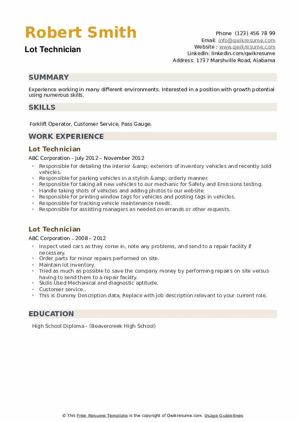 Lot Technician Resume example
