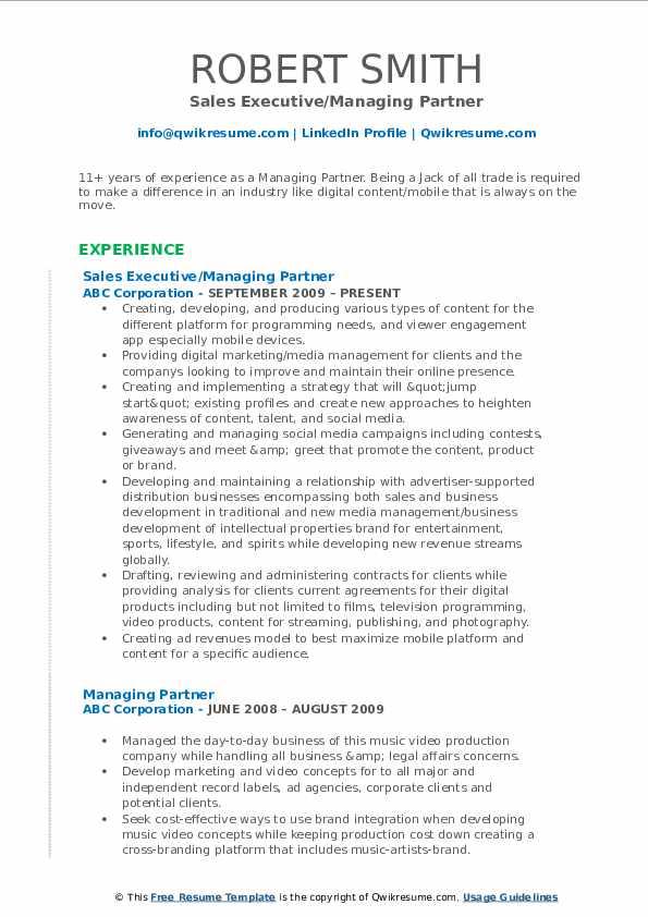 Sales Executive/Managing Partner Resume Example