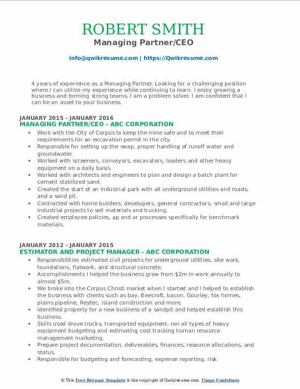 Managing Partner/CEO Resume Template