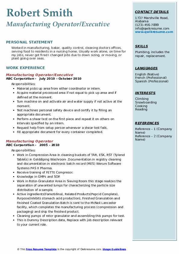 Manufacturing Operator/Executive Resume Format