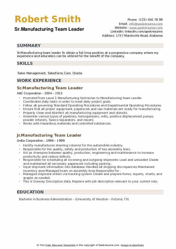 Manufacturing Team Leader Resume example
