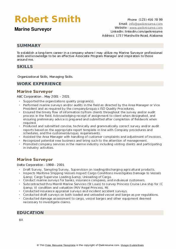 Marine Surveyor Resume example