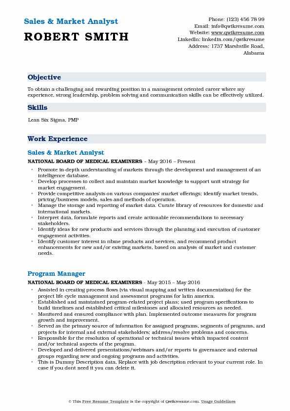 Sales & Market Analyst Resume Model
