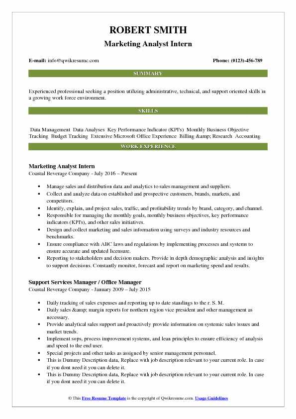 Marketing Analyst Intern Resume Example