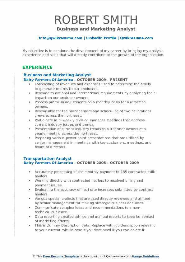 Business and Marketing Analyst Resume Example