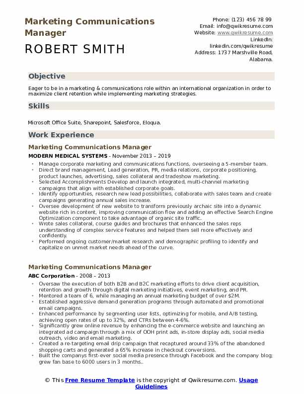 Executive Media Director Resume Example
