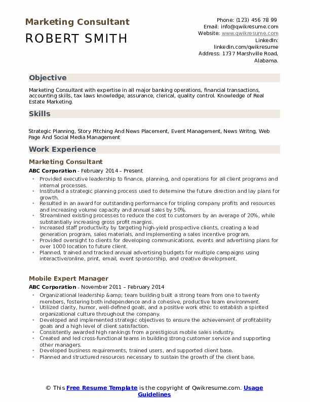Marketing Consultant Resume Format