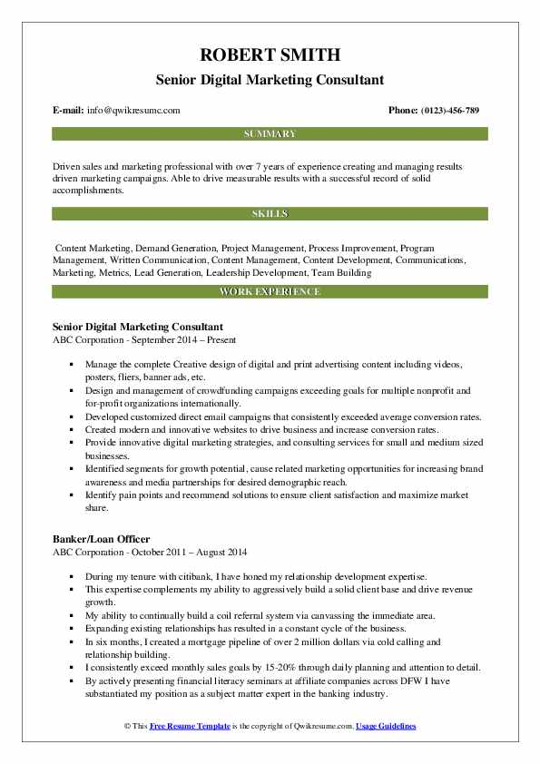 Senior Digital Marketing Consultant Resume Sample