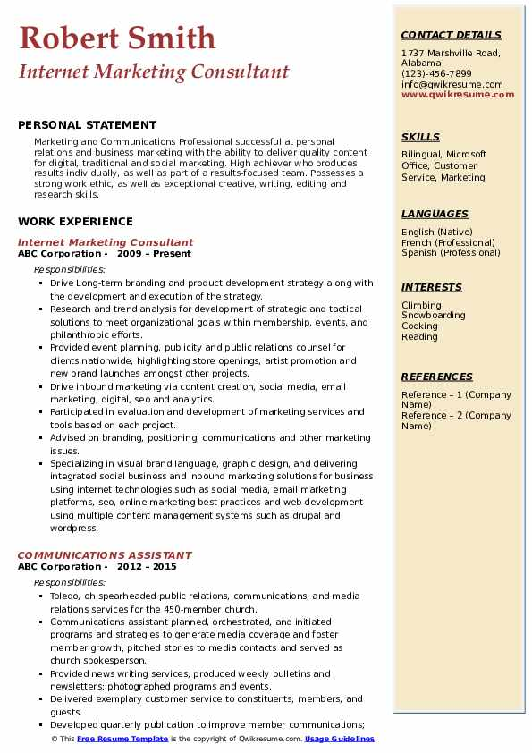 Internet Marketing Consultant Resume Example