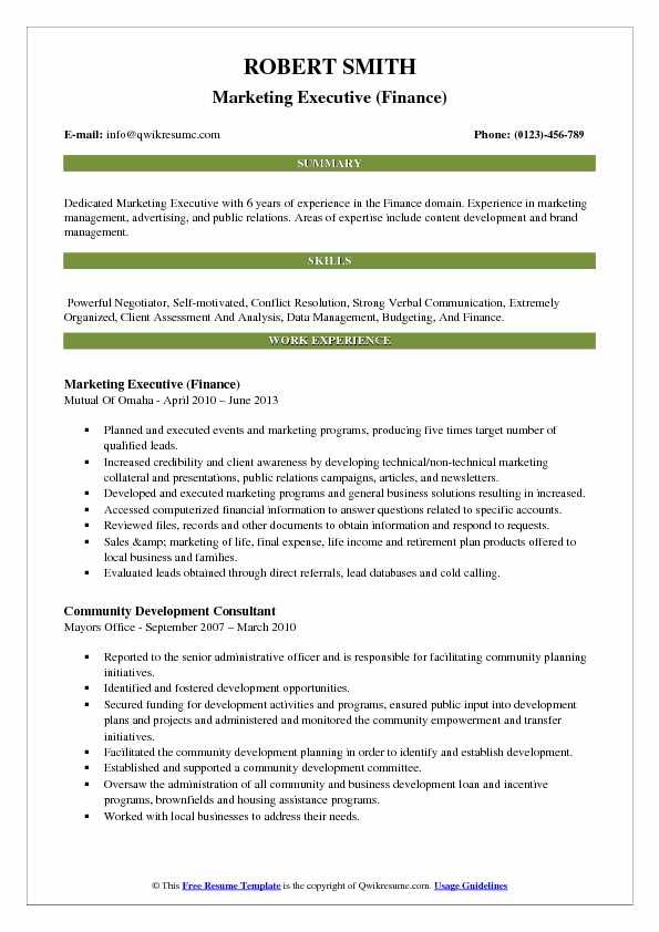 Marketing Executive (Finance) Resume Example