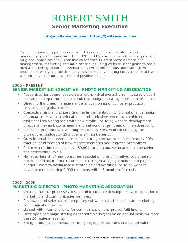 Senior Marketing Executive Resume Example
