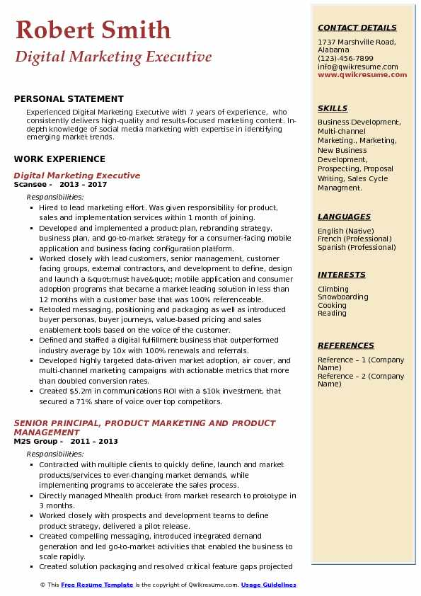 Digital Marketing Executive Resume Template