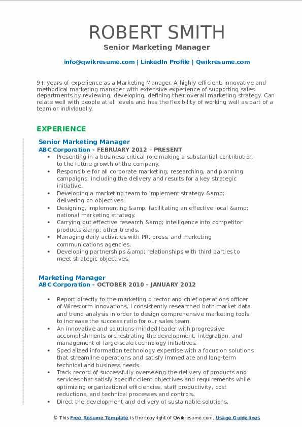Senior Marketing Manager Resume Example