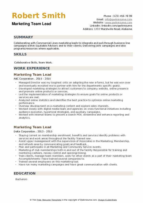 Marketing Team Lead Resume example