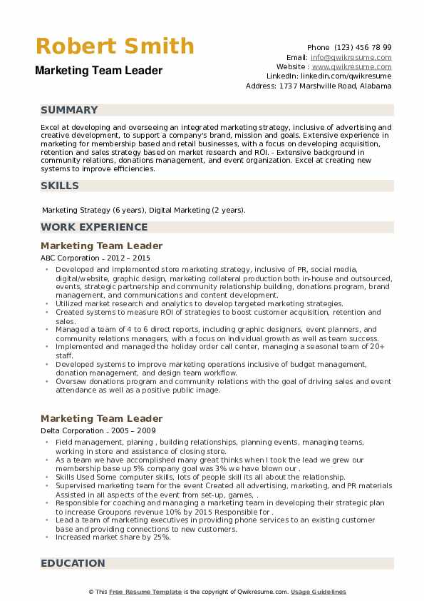 Marketing Team Leader Resume example