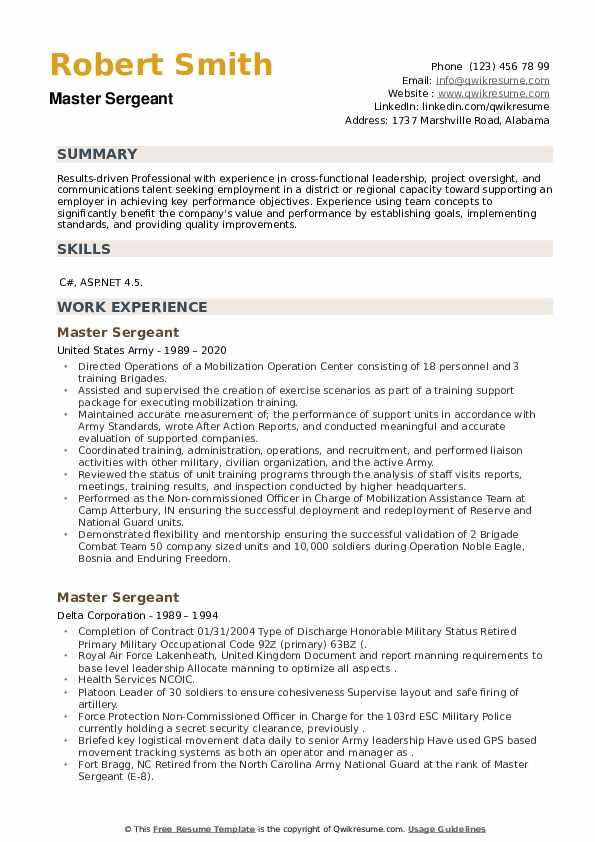 Master Sergeant Resume example
