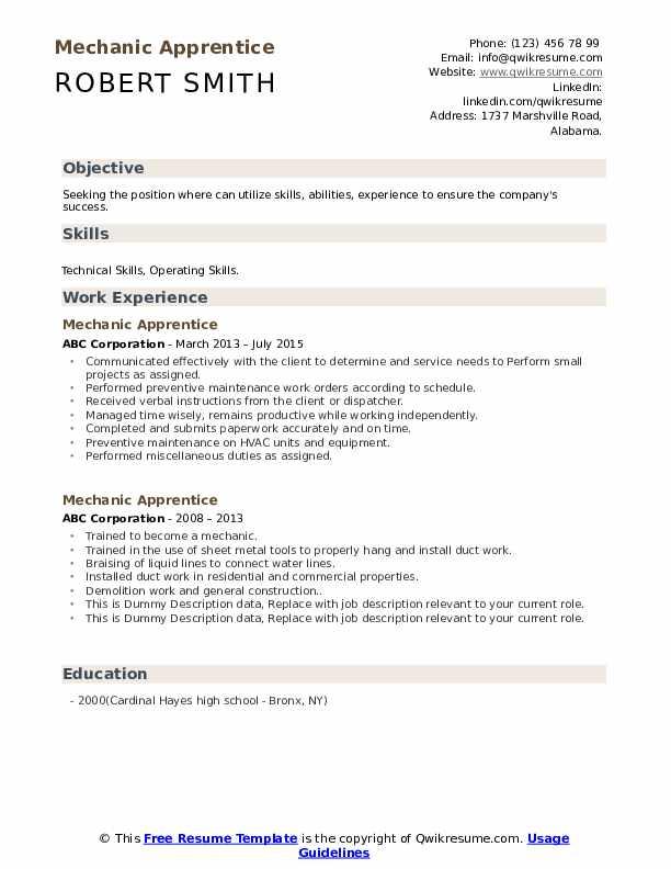 Mechanic Apprentice Resume example