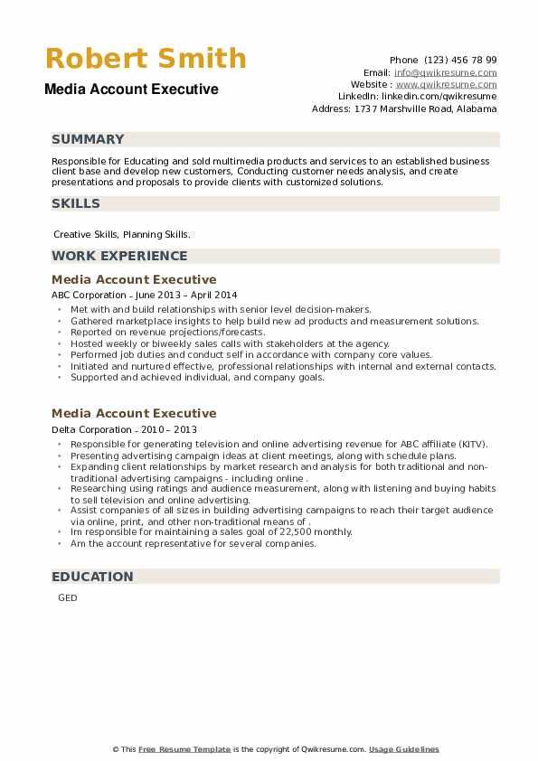 Media Account Executive Resume example