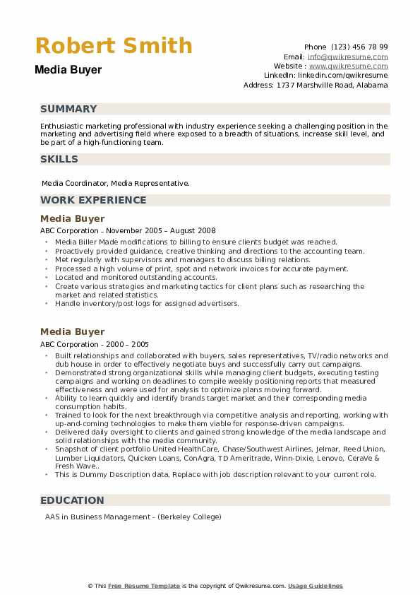 Media Buyer Resume example
