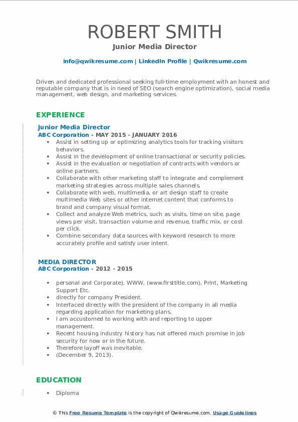 Junior Media Director Resume Format