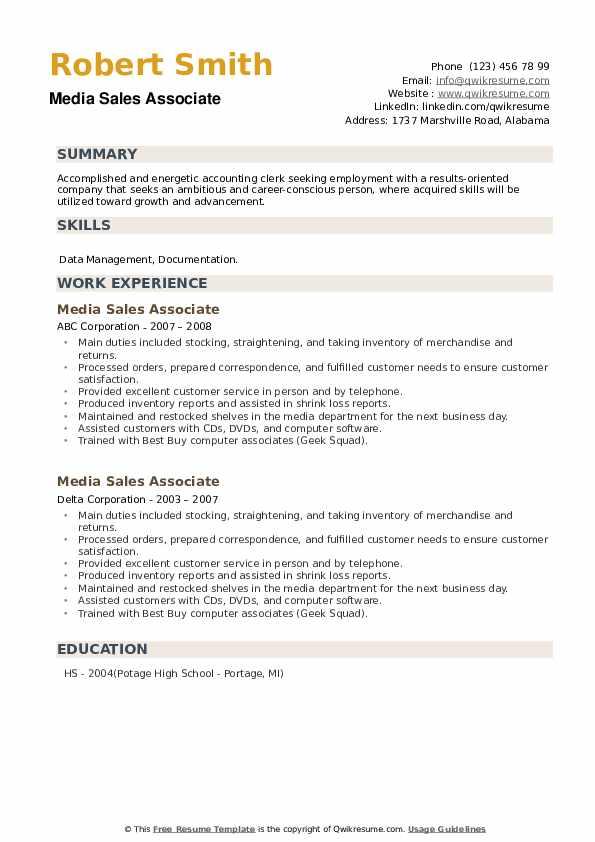 Media Sales Associate Resume example