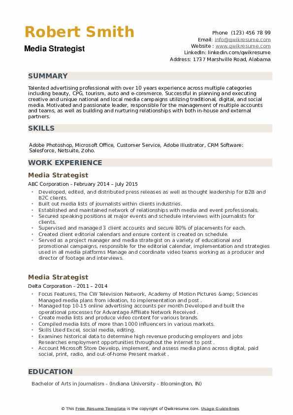 Media Strategist Resume example