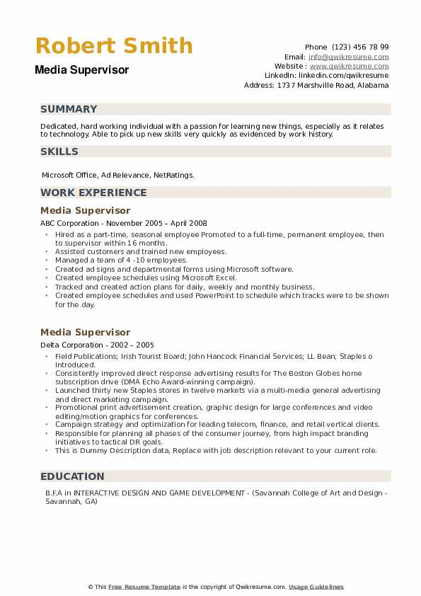 Media Supervisor Resume example